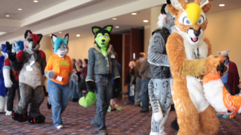 Furries 4