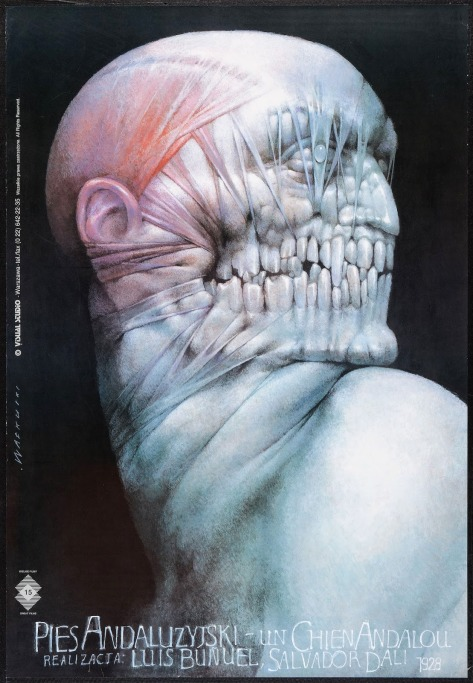 PIES ANDALUZYJSKI - Polish Poster by Wieslaw Walkuski