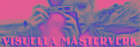 Visuella-Masterverk-header-COLOR