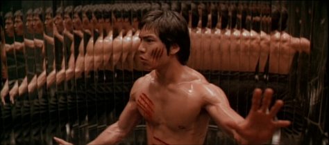 dragonbrucelee_mirrors